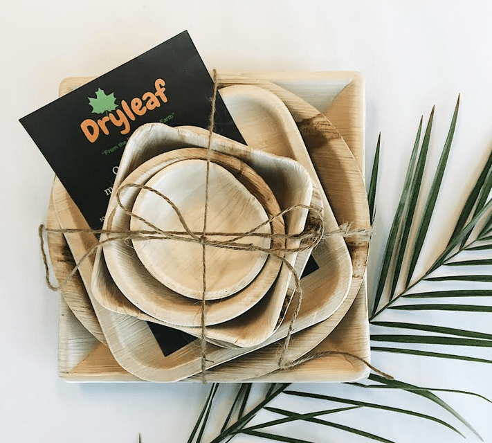 Small Business Success Story: Dryleaf